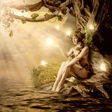 Fantasy fairytale beautiful woman. Wood nymph or dryad sitting about water and big old tree stock images