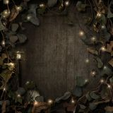 Fantasy fairytale vines border dark stock image