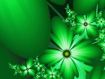 Fantasy floral image, backgroung for inserting text.Green fractal. Fractal image, digital artwork for creative graphic design, template for inserting text Stock Images