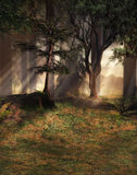 Fantasy Forest. A 3D rendered scene of a fantasy forest with light through the trees vector illustration