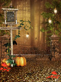 Fantasy forest with pumpkins Stock Photography