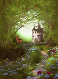 Fantasy Forest Way Castle Stock Photos