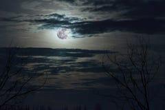 Fantasy full moon in dark blue sky Stock Images