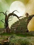 Fantasy garden Stock Images