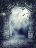 Fantasy gate with bats Stock Images