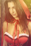 Fantasy girl in the forest. Beautiful woman wearing a red cape in the forest Royalty Free Stock Photo