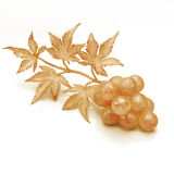 Fantasy grapes Royalty Free Stock Image