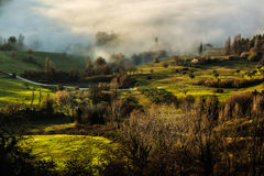 Fantasy green countryside with fog Stock Photo