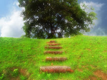 Fantasy green landscape and steps Royalty Free Stock Image