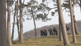 Fantasy Group walking on hill between trees stock video