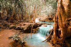 Fantasy jangle landscape with turquoise waterfall Royalty Free Stock Image