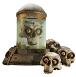 Fantasy jar and skulls Royalty Free Stock Image