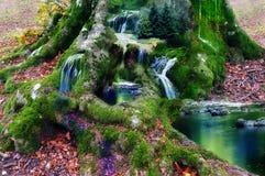 Fantasy land  Stock Image