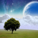 Fantasy Landscape. A Fantasy Landscape with Tree, Clouds, Stars and Planet Royalty Free Stock Image
