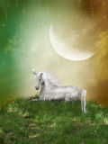 Fantasy landscape. With unicorn and a big moon Stock Image
