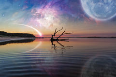 Fantasy landscape with driftwood, huge planet in the sky, galaxy Royalty Free Stock Photo