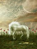 Fantasy landscape. With horse flowers and birds Stock Photography