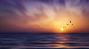 Fantasy Landscape - Sunset -Sunrise. Surreal Ocean Landscape with flying birds Royalty Free Stock Photo