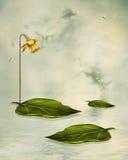 Fantasy leaf Stock Photo
