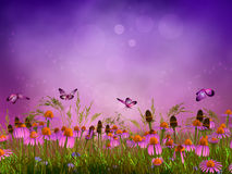 Fantasy meadow. In fairy land Royalty Free Stock Images