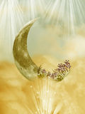 Fantasy moon Royalty Free Stock Photo