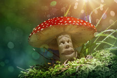 Fantasy mushroom Stock Images
