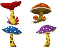 Fantasy mushrooms Stock Photos