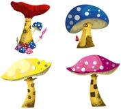 Fantasy mushrooms Royalty Free Stock Photo