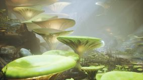 Fantasy mushrooms in a magic forest. Beautiful magic mushrooms in the lost forest and fireflies on the background with. The fog stock illustration