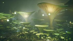 Fantasy mushrooms in a magic forest. Beautiful magic mushrooms in the lost forest and fireflies on the background with