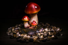 Fantasy mushrooms Royalty Free Stock Image