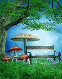 Fantasy park with mushrooms Stock Photos