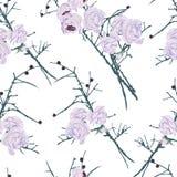 Fantasy roses calming seamless vector pattern Stock Photos