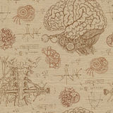 Fantasy seamless background with brain, throat and mechanisms vector illustration