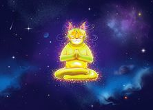 Fantasy shining yellow cat in meditation. With lotus yoga position in space Royalty Free Stock Photo