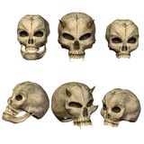 Fantasy skulls Stock Images