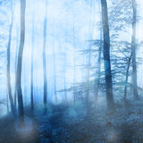 Fantasy snowfall in the forest with bokeh Royalty Free Stock Photos