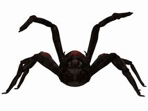 Fantasy Spider Royalty Free Stock Photos