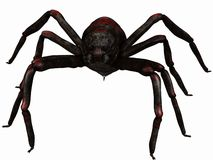 Fantasy Spider Royalty Free Stock Photo