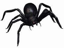Fantasy Spider Stock Image