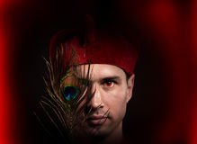 Fantasy style portrait of an inquisitor Royalty Free Stock Photos
