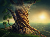 Fantasy tree Royalty Free Stock Image