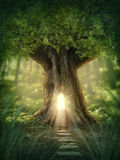 Fantasy tree house. With light in the forest Stock Image