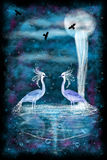 Fantasy two herons Royalty Free Stock Photography