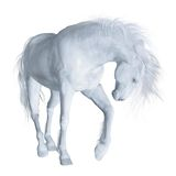 Fantasy unicorn 3 Royalty Free Stock Photos