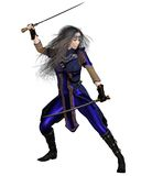Fantasy Warrior Princess Fighting Stock Images