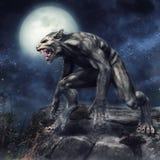 Werewolf standing on a cliff. Fantasy werewolf standing on a rocky cliff on a full moon night royalty free illustration