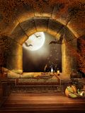 Fantasy window with bats royalty free illustration