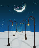Fantasy  winter night Royalty Free Stock Photo