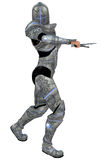 Fantasy woman knight Royalty Free Stock Images